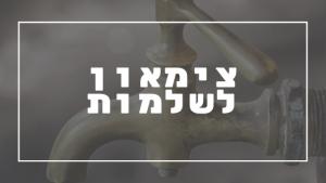 צימאון לשלמות | פרשת יהדות