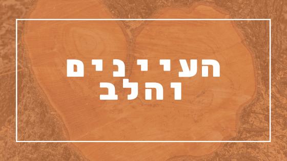 העיינים והלב | פרשת יהדות