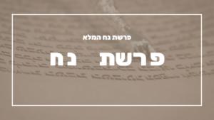 פרשת נח | פרשת יהדות