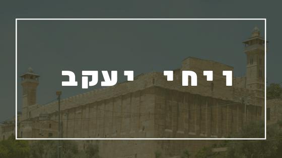 ויחי יעקב   פרשת יהדות